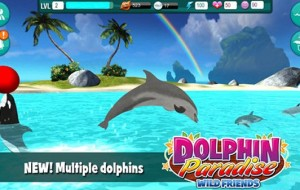 Dolphin Paradise: Wild Friends [Review]