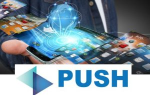 Push Cardz – Digital Business Cards