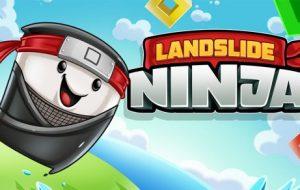 Landslide Ninja [Android, iOS Game]